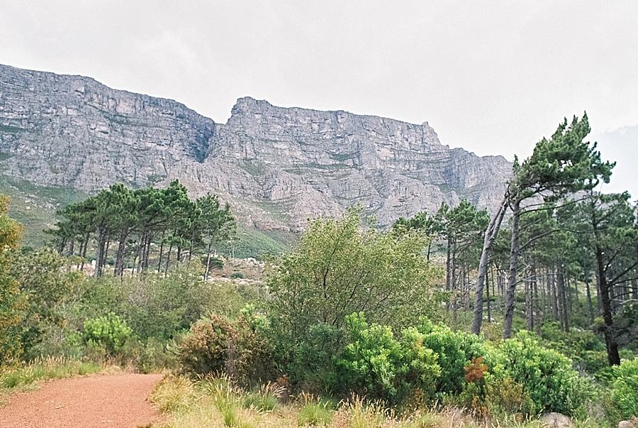 afrika, namibia, botswana, sambia, zimbabwe, südafrika, kapstadt, reisen, reise, traveller, wanderlust, reisefotos, maro polo young line, marco polo, abenteuer, sonne, sand, meer, wüste, löwen, giraffen, elefanten, safari, lions head, tafelberg, llundadno, stellenbosch, grot constantia, robben island, bo kaap