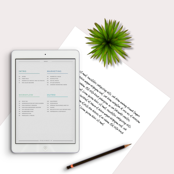 business-ebook-fuer-fotografen-aline-lange