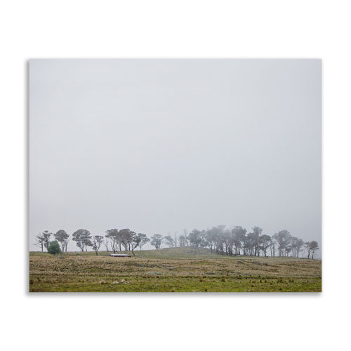 Wandbild Nebel 40x50 cm